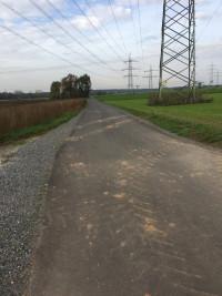 """Strecke von der Staatsstraße 2443 in Richtung """"Tannenhof"""""""